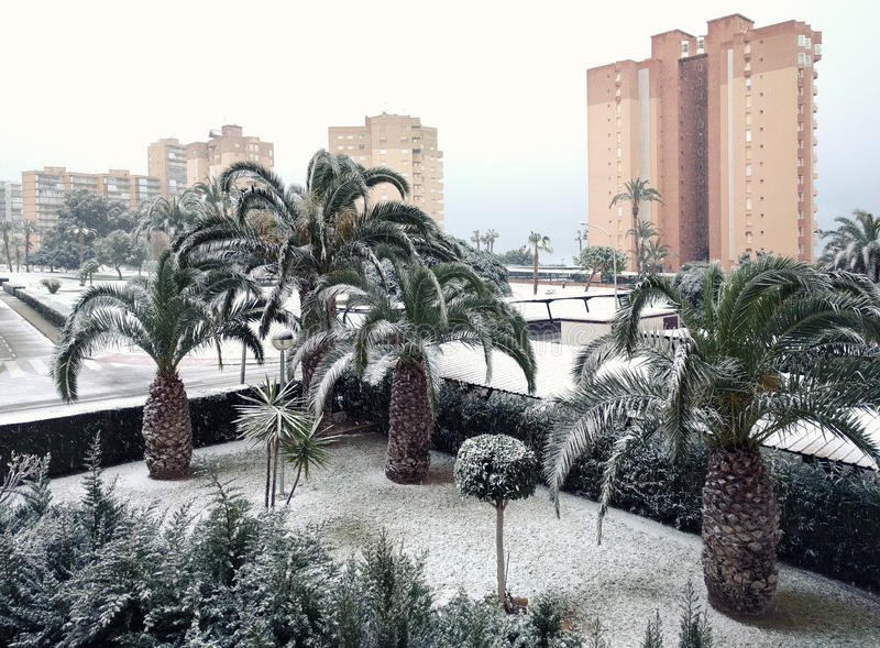 Snowfall at Campoamor, for the first time in over a century. Spa. Snowfall at Campoamor, for the first time in over a century. Campoamor is a popular seaside royalty free stock images