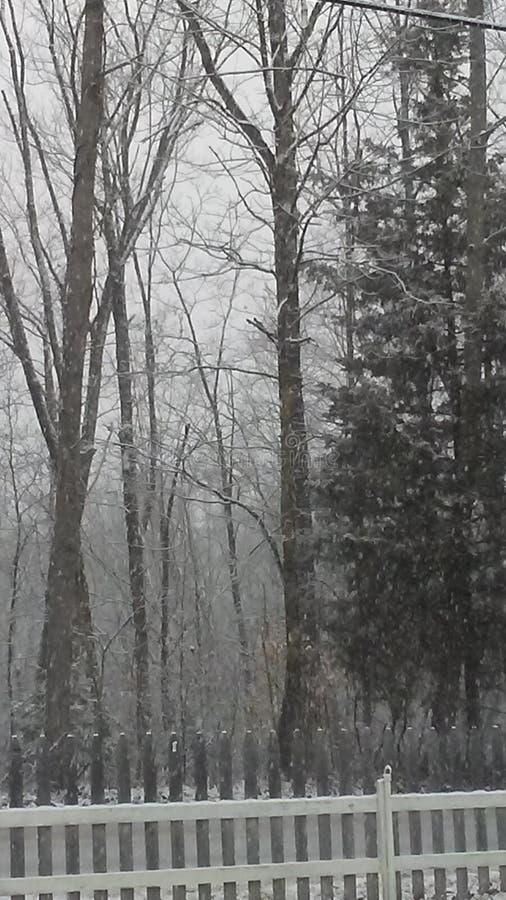 Snowfall in Indiana stock photo