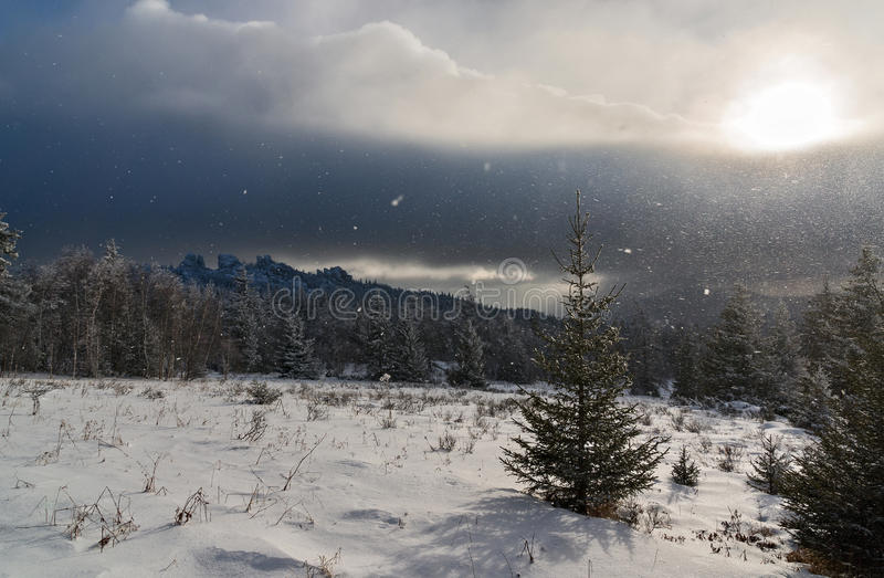 Snowfall in mountains. With sun shining through royalty free stock photo