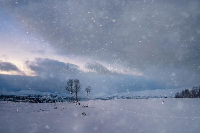 Winter landscape of northern Norway royalty free stock photography