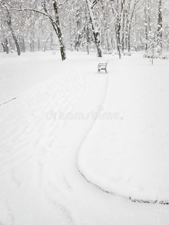 Download Snowfall in the park stock photo. Image of bench, detail - 451736