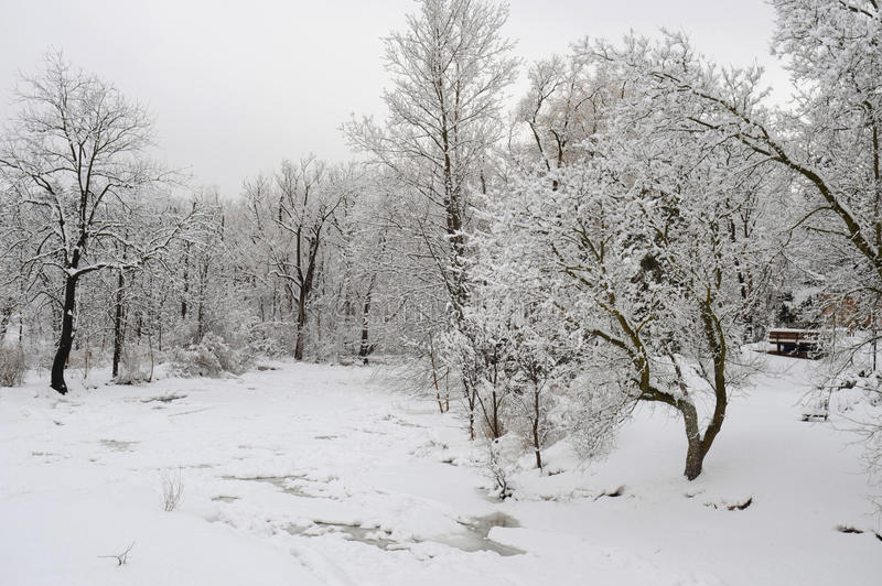 Snowfall in the park stock photography