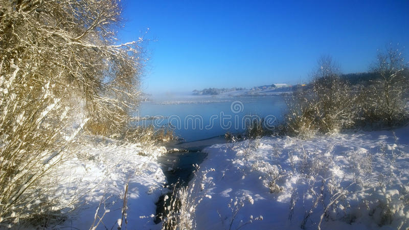 Snowfall. River noticed the snow. Snow-covered branches and bushes on a background of blue sky. Winter sunny day.  in January. Christmas weather. Trees under stock photography