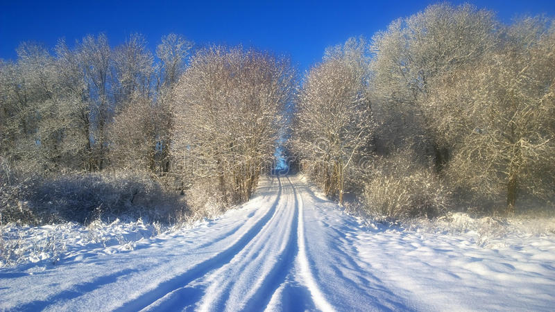 Snowfall. Snowy winter road in the forest. stock image