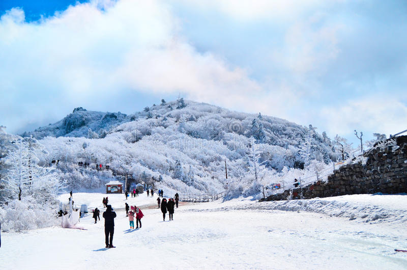Snowflake βουνό στοκ εικόνες με δικαίωμα ελεύθερης χρήσης