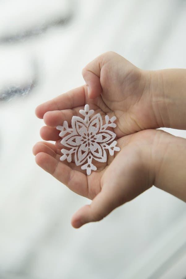 Snowflake στο φοίνικα στοκ φωτογραφία