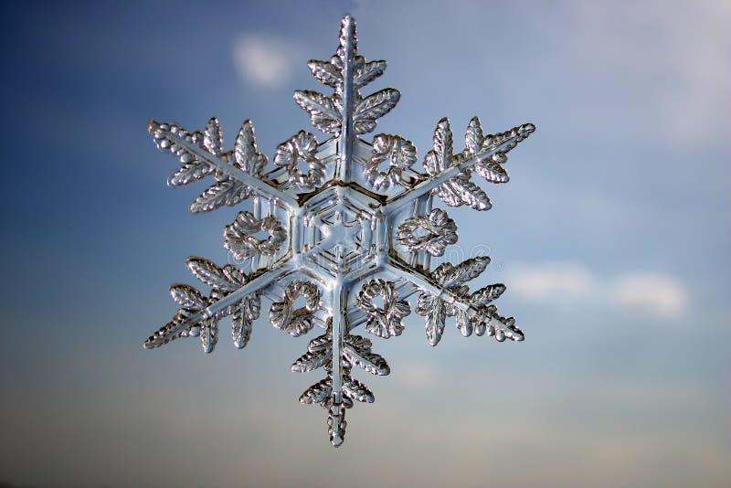 Download Snowflake arkivfoto. Bild av vitt, snowflakes, vinter, close - 243182