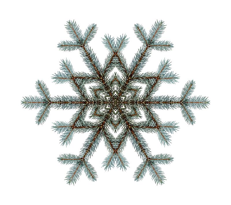 Snowflake shaped from Christmas tree branches, fir branches, isolated isolated against white background. royalty free illustration