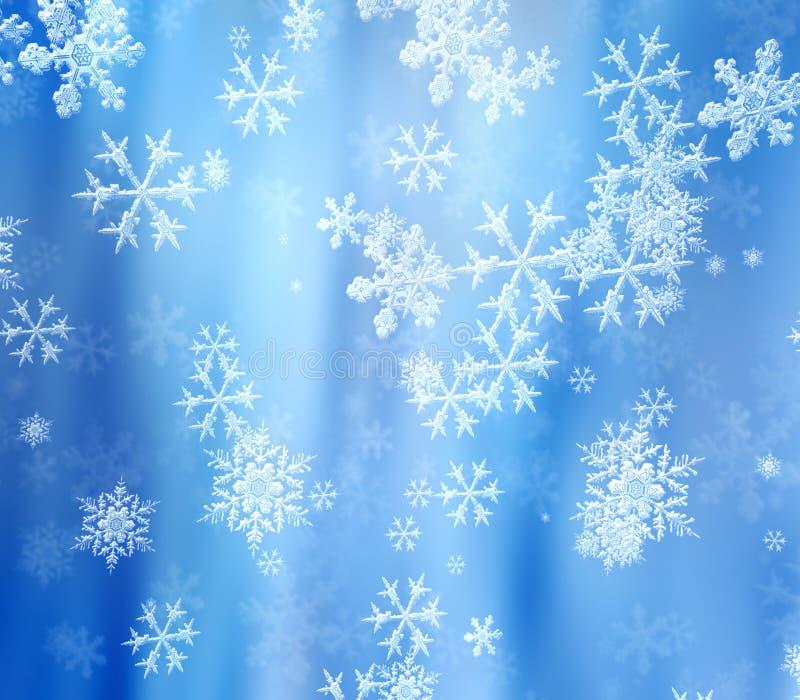 Snowflakes Arkivbilder