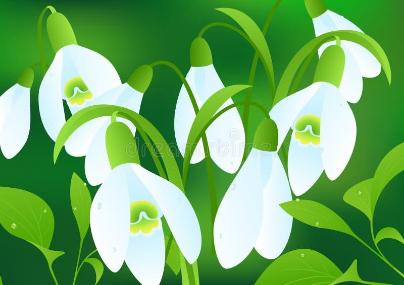 Snowflowers illustration de vecteur