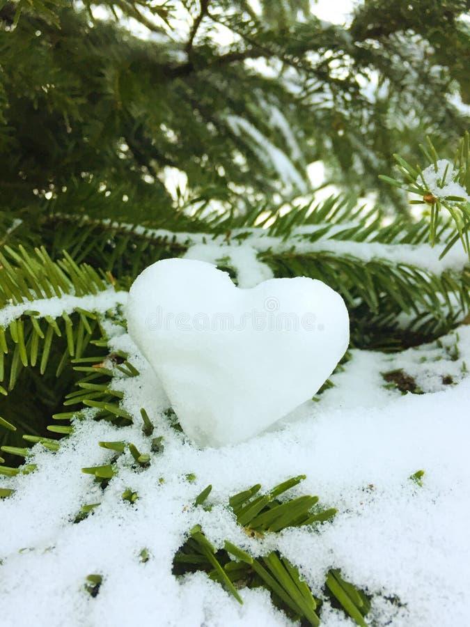 Snowheart royaltyfri bild