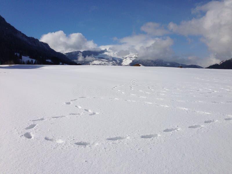 Snowheartart стоковые изображения