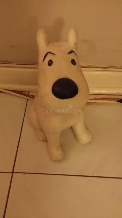 Snowie le chien photographie stock libre de droits