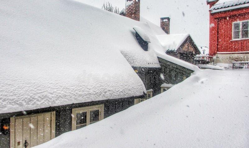 snowing стоковая фотография