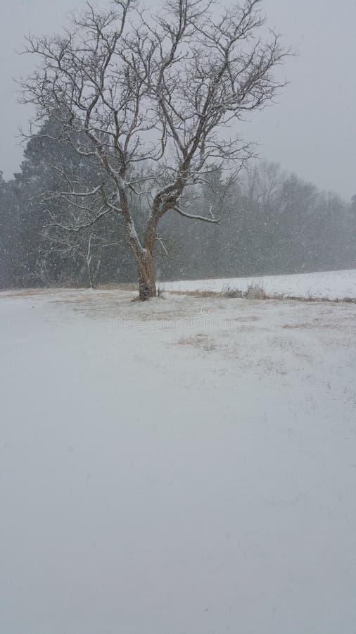 snowing royalty-vrije stock afbeelding