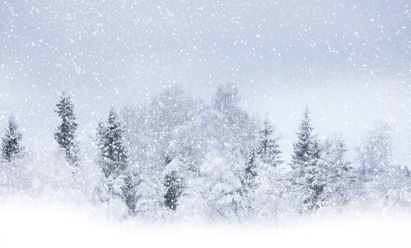 Snowing royalty free stock photos