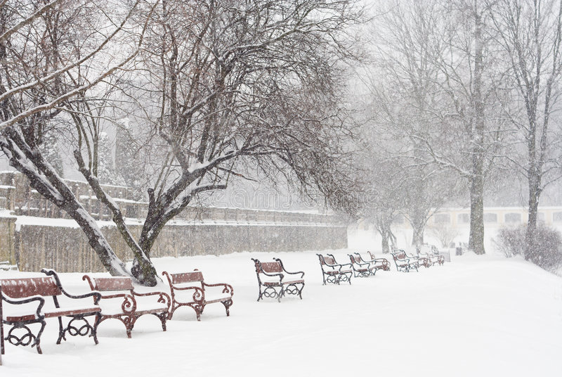 Download Snowing stock photo. Image of chill, park, frosty, morning - 3533628