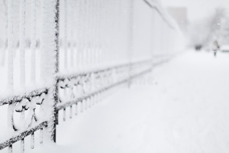 snowing royaltyfri foto