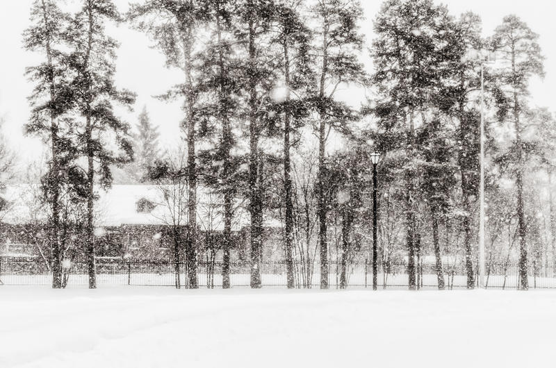 snowing photo stock