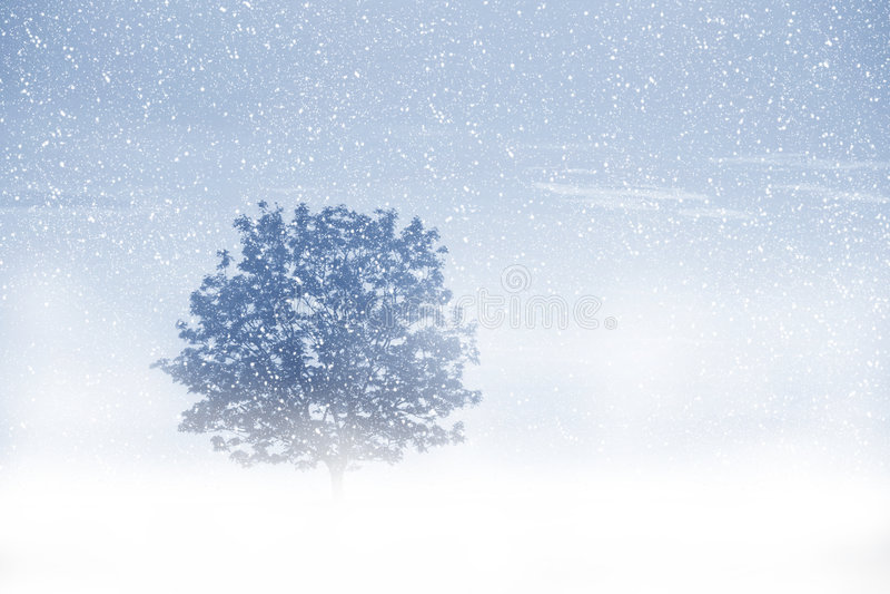 snowing royaltyfri bild