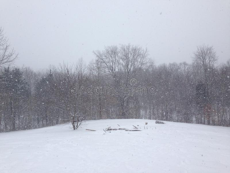 Snowing a lot royalty free stock photography