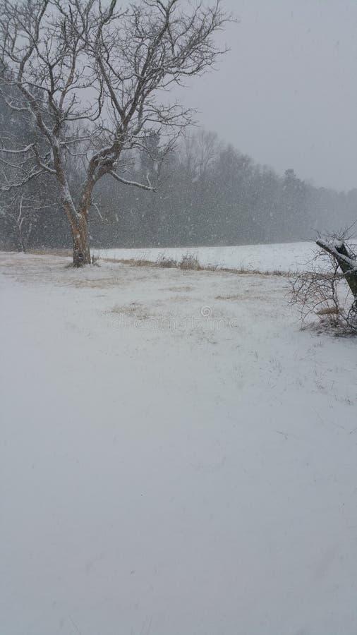 Snowing stock image
