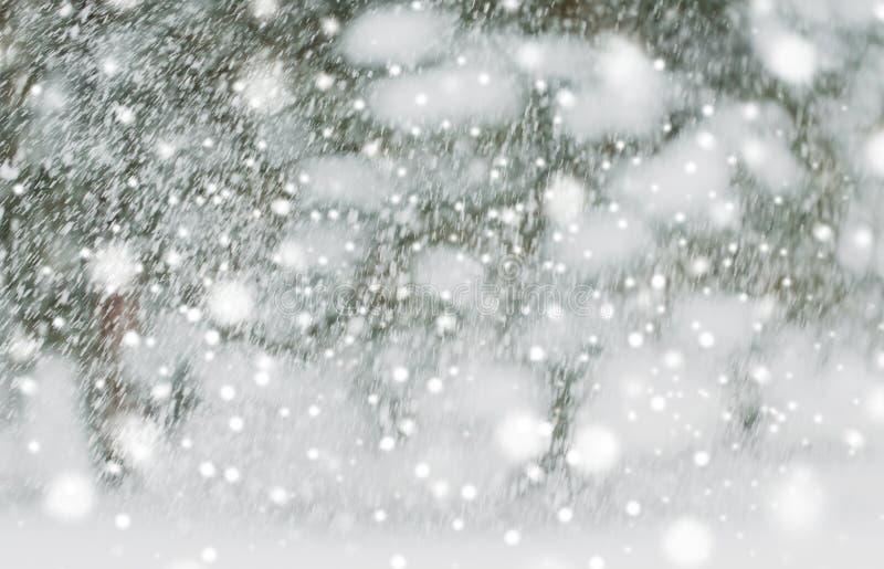 Snowing lub opad śniegu obrazy stock