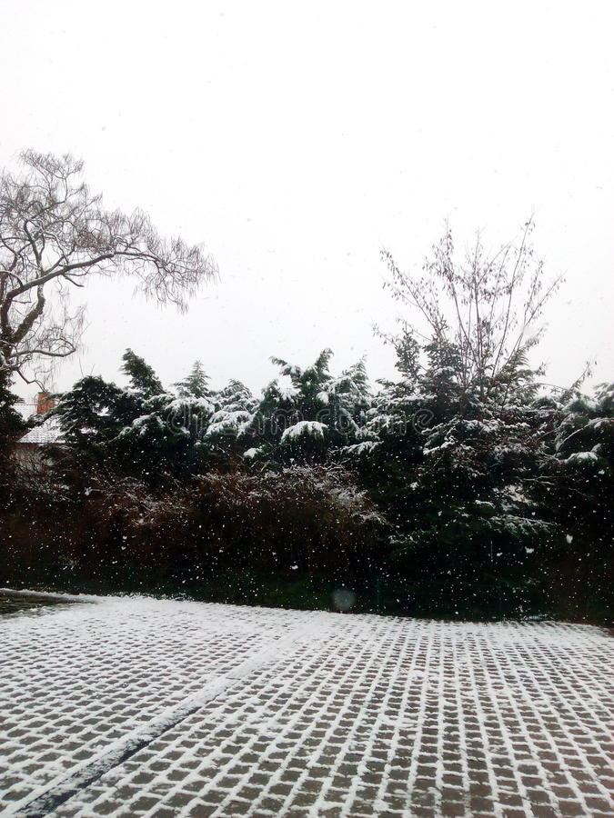 Snowing royalty free stock photography