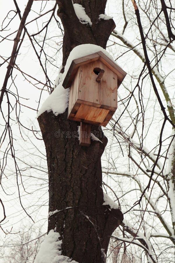 Snowly fågelhus i storstaden arkivfoton