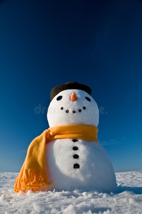 Free Snowman Stock Photos - 13260283