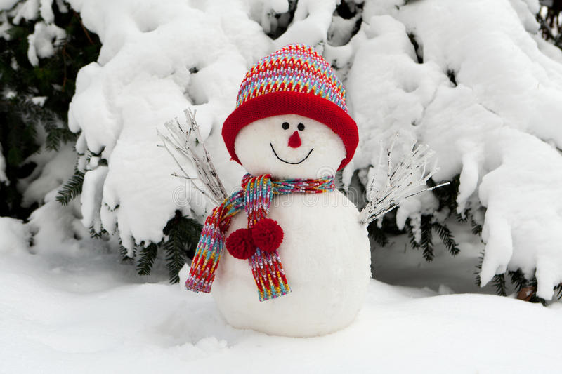 Download Snowman Stock Photos - Image: 17290573