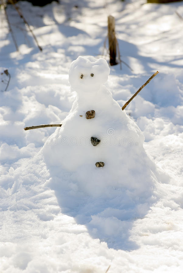 Free Snowman Stock Photos - 20776373