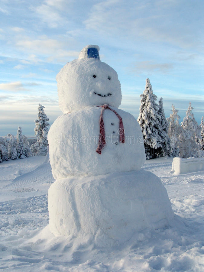 Free Snowman Royalty Free Stock Image - 49069796