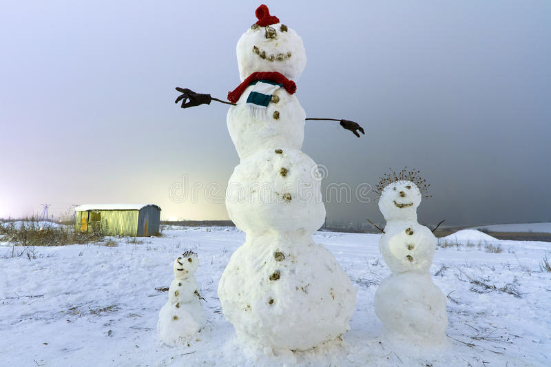 Download Snowman Family On The Meadow At Night Stock Illustration - Image: 28255185