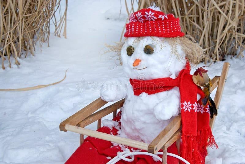 Snowman i sled royaltyfri foto