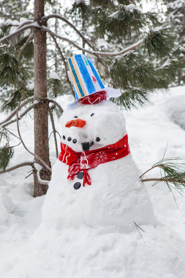Download Snowman with a Pipe stock photo. Image of outside, playful - 28453282