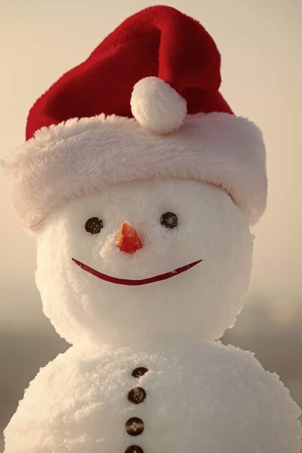 snowman radosny Boże Narodzenia lub xmas dekoracja zdjęcie royalty free