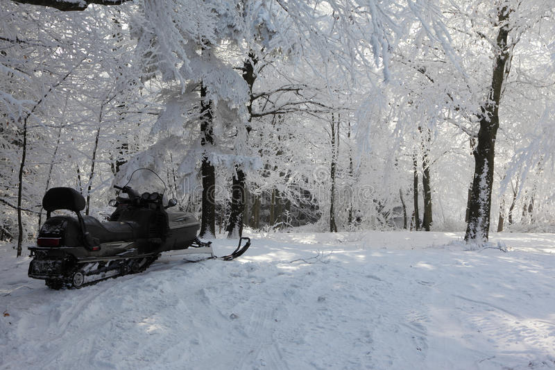 Snowmobile on a forest glade