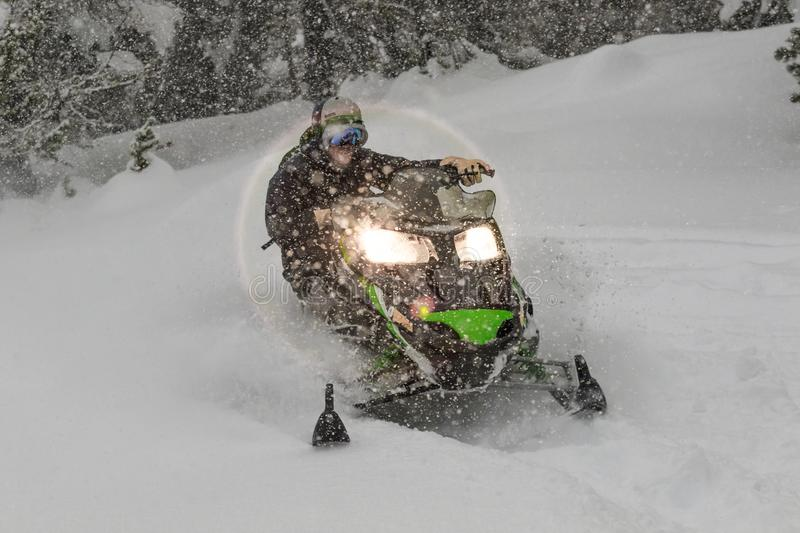 Snowmobile at high speed while it is snowing in the pine forest stock images