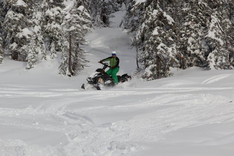 Snowmobile o cavaleiro foto de stock