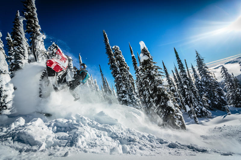Snowmobile Ride em Cowboy!. Fresh powder covers the gorgeous Selkirk Range deep in the Canadian Rockies of BC while a snowmobile rider rips up a hill climb in royalty free stock photo