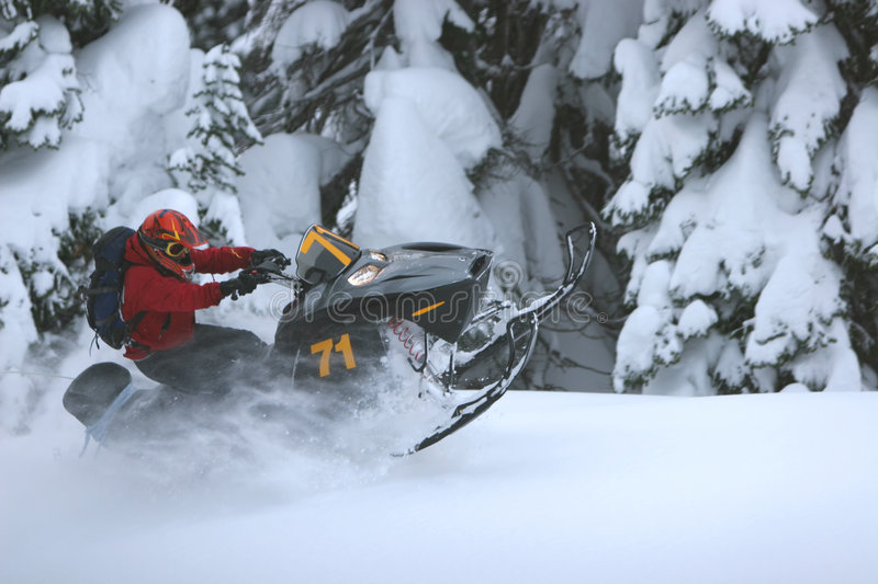 Snowmobile Roost royalty free stock photo