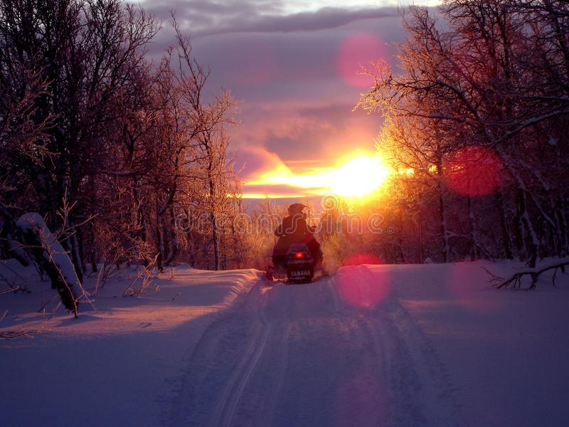 Snowmobile on track at sunset royalty free stock images