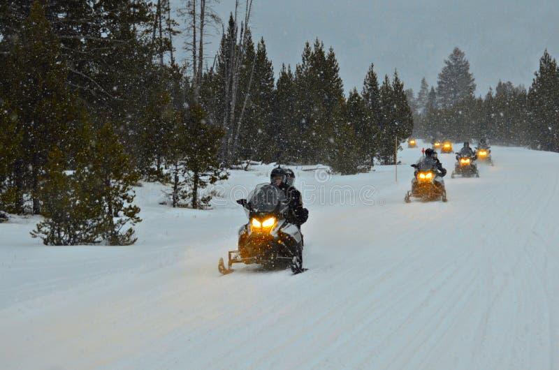 Snowmobile wycieczka turysyczna przy Yellowstone parkiem narodowym fotografia royalty free