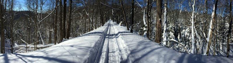 Snowmobiling de karretjelijn stock foto's
