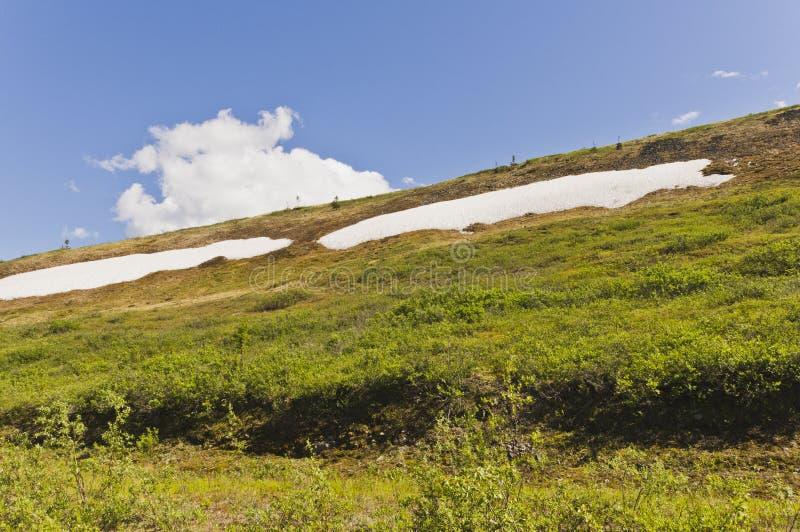 Snowpacks da montanha foto de stock