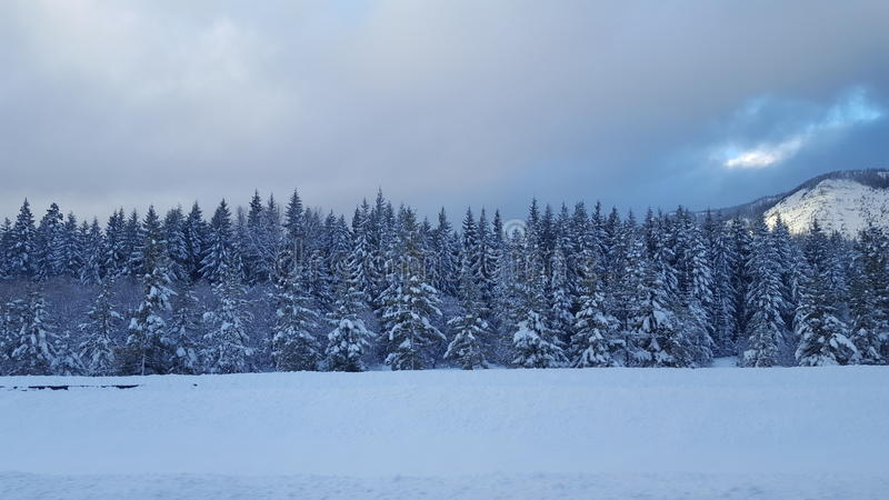 Snowqualmiepas, Washington 1 royalty-vrije stock fotografie