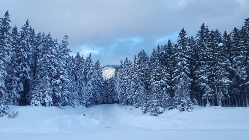 Snowqualmiepas, Washington 3 royalty-vrije stock afbeeldingen