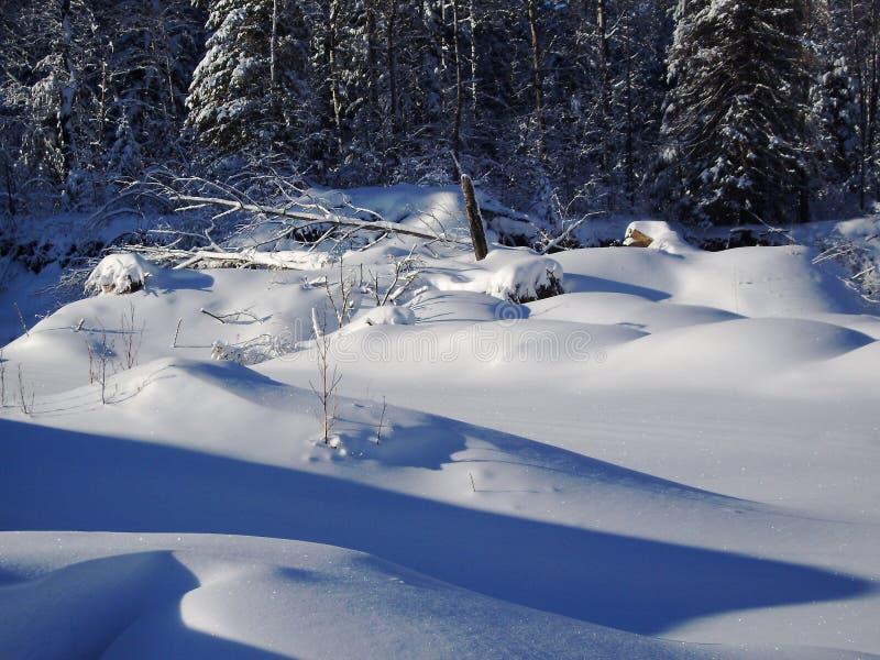 Snowscape северная Минесота стоковое изображение
