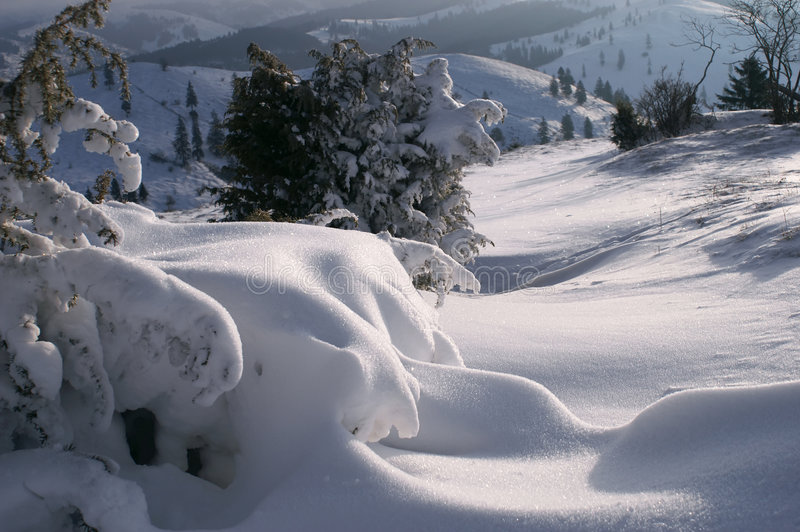 snowscape 免版税库存图片